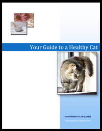 Your-Guide-to-a-Healthy-Cat