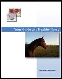 Your-Guide-to-a-Healthy-Horse-1